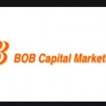 BOB Capital Markets Recruitment 2021 Apply for Senior Manager/ Assistant Vice President Post